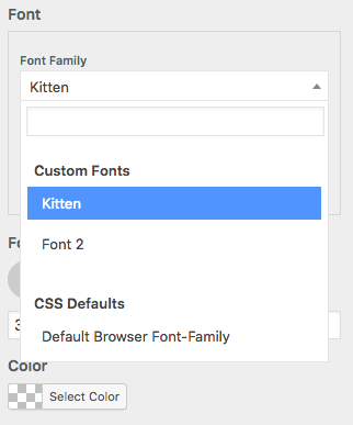 Custom Fonts - Page Builder Framework